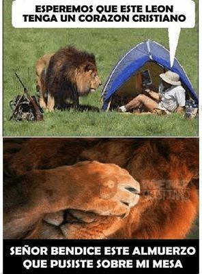 Un León cristiano