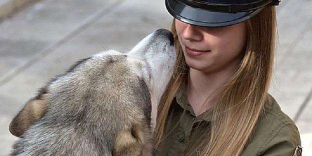 El tribunal supremo de Canadá autoriza las relaciones sexuales con animales
