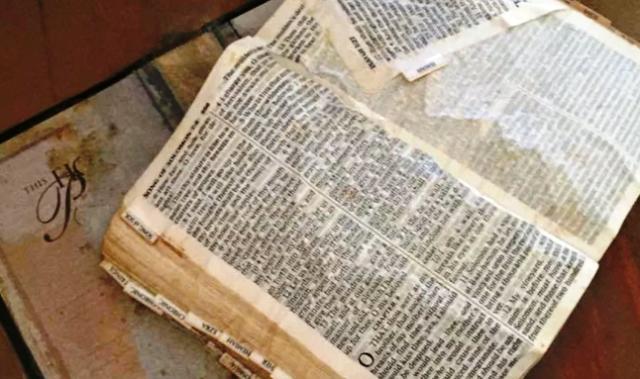 Mujer impactada por el mensaje de una Biblia que encontró tras inundaciones por huracán Harvey