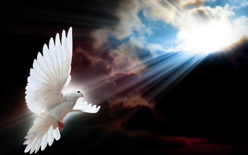¿Qué es la blasfemia contra el Espíritu Santo?