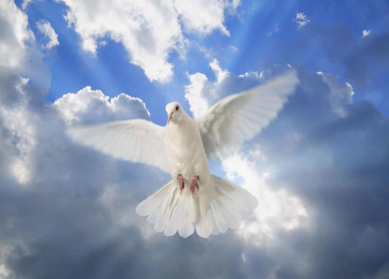 Devocional: El Prometido Espíritu Santo