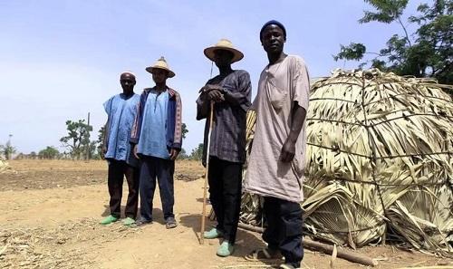 Miles de musulmanes fulani se entregan a Cristo
