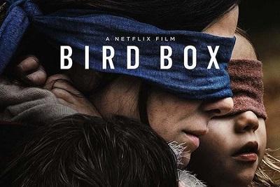 "Netflix: ""No te lastimes desafío viral Bird Box es peligroso"""